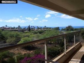Maui Banyan Q403